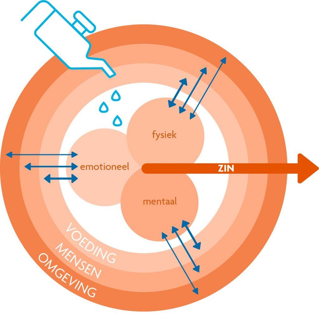 Energiemodel uit 'Energiek leven - anders kijken naar vermoeidheid bij chronische aandoeningen'